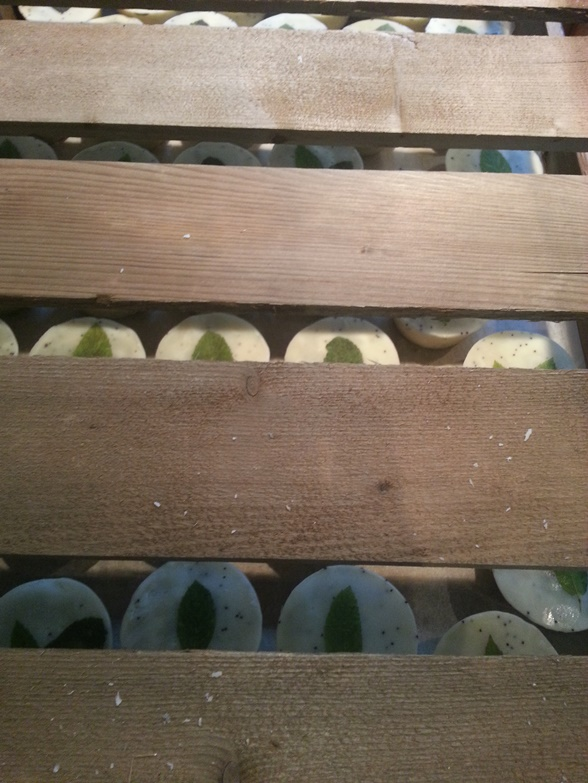 View of Soap Cakes through drying rack above_ALL NATURAL SOAP Co