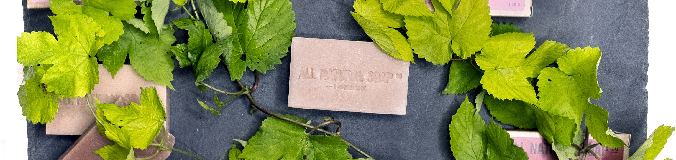 Scents-direct-from-nature_ALL-NATURAL-SOAP-Co